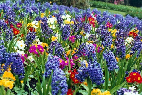 spring-flower-gardens